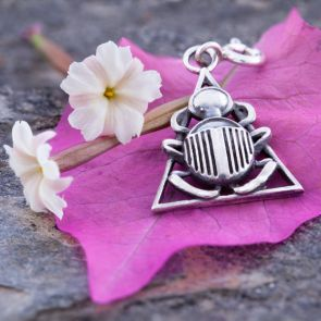 Scarab in a Triangle Charm